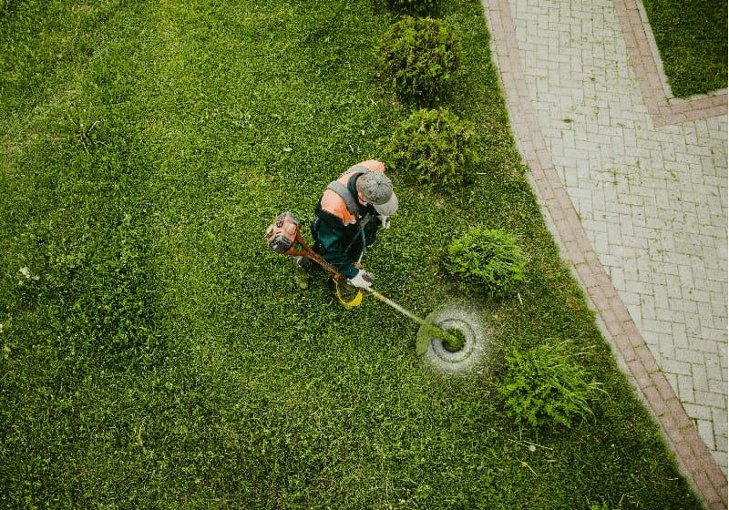 hiring commercial landscapers